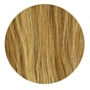 Hair Extensions Honey Brown and Ash Blonde (#12/24)