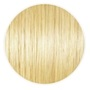 Hair Extensions Blonde (#613)